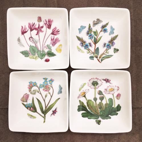 vintage botanical print plates