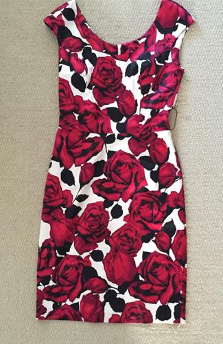 Joseph Ribkoff dress ($8)