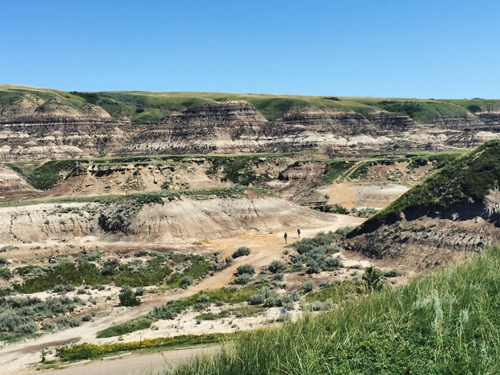the badlands (Drumheller)
