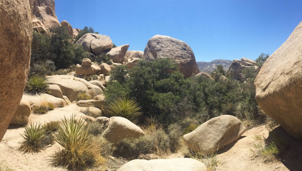 boulders in the sun